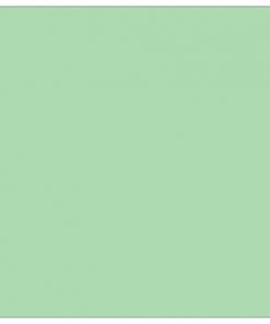 Flex - Mint Groen